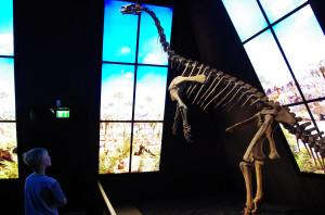 Plateosaur.jpg